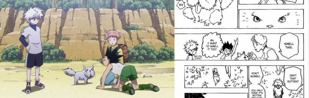 hunter x hunter manga vs anime art